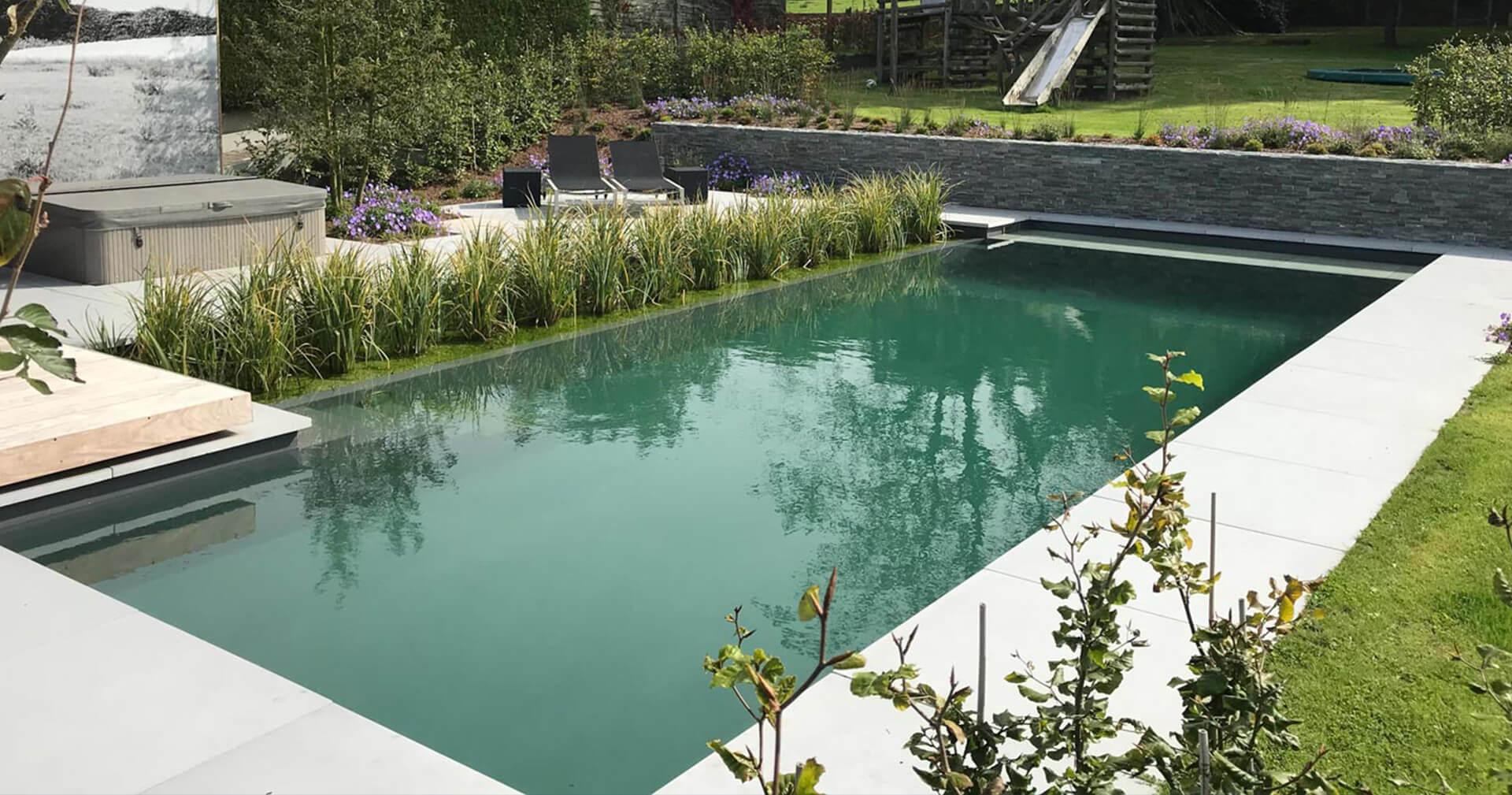 Vierkant Biotop natuurzwembad met flora en fauna aan de zijkant