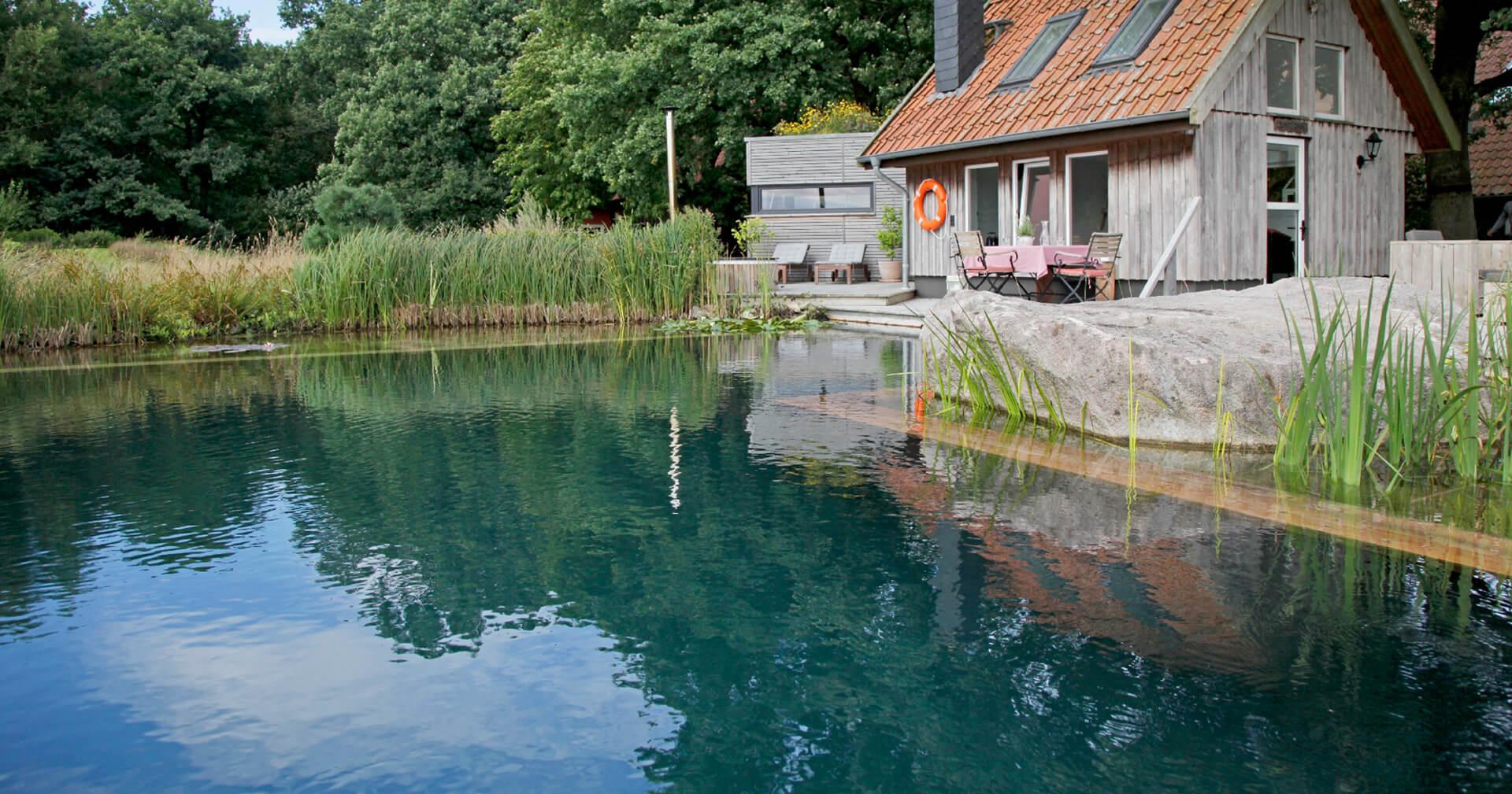 Zwemvijver met een houten hut in de natuur
